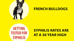 Vancouver's Soaring Syphilis