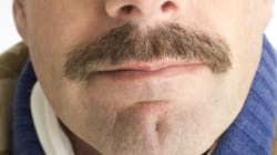 How A Mo Grows Throughout