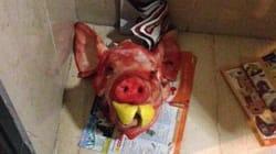Testa di maiale mozzata davanti a casa di De