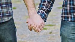 Chaire de recherche sur l'homophobie de l'UQAM: deux ans de lutte à la