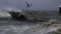 Tempête Xaver : finalement, les fortes marées n'ont pas fait de dégâts en