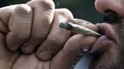 Légalisation du cannabis: une petite «puff» pour l'homme, un grand pas pour l'humanité - Gérard