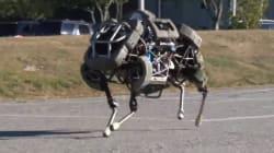 Bientôt des robots