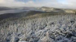 Industrie forestière: on nous donne l'indigne honneur de nous sacrifier - Pascal