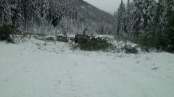 Avalanche Triggers Massive Landslide, Closes