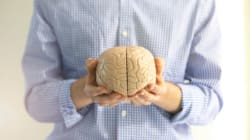 Why You Need Both Sides Of Your Brain For