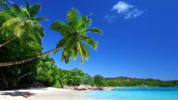 Il est temps de s'attaquer sérieusement aux paradis fiscaux - Pierre Dionne Labelle, député NPD de