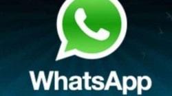 Whatsapp raddoppia in 10 mesi gli utenti