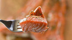 Genetically Modified Salmon Coming To Canadian Dinner