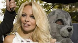 Pamela Anderson scrive a Netanyahu