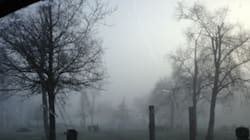 Fog Accomplice In Suspect's