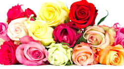 Skip The Red Roses And Try Giving These Flowers On Valentine's