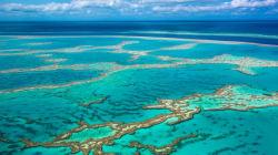 Grande barrière de corail: feu vert à un projet minier