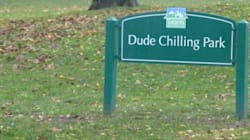 Dudes, Chill! It's Here To