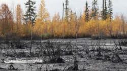 Massive Pipeline Spill Kept Under Wraps For 5