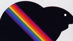 Montréal 1976, Sotchi 2014: les Jeux olympiques et les droits des LGBT - David