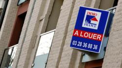 Loi Duflot: l'UMP saisit le conseil
