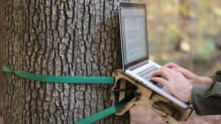 Un bureau pour travailler dans la forêt
