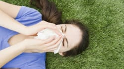 How To Help Seasonal Allergies