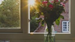 10 idées pour mettre un peu de printemps dans votre vie