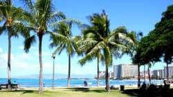 ハワイのヒーリングスポット「緑に癒されよう」