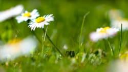 Détox de printemps: 11 conseils pour se sentir mieux dans son