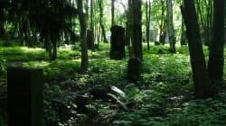 Un cimetière exclusivement lesbien à