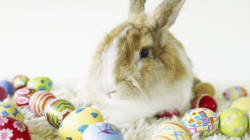 From Rabbits to Resurrections: How Easter Came to