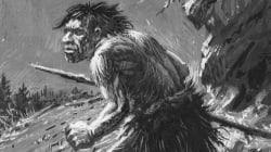 Los neandertales tenían menos diversidad