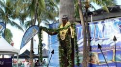 花・貝・リボン・木の実...ハワイ文化の象徴、さまざまなレイ