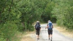 Umbria da meditazione sulla Via di Francesco: a piedi o su due ruote fra natura, fede e