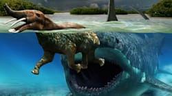 Les dinosaures comme vous ne les avez jamais