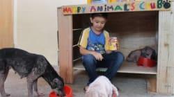 Ce garcon de 9 ans a construit un refuge pour animaux dans son