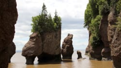 P.E.I. Beaches, Bay Of Fundy Trail Coming Soon To Google Street