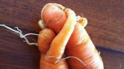 Pourquoi les légumes moches n'arrivent pas à s'imposer en