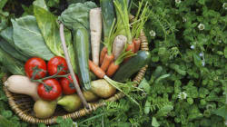 New Veggies To Try At The Farmers Market This