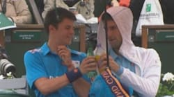 Djokovic trinque avec le ramasseur de