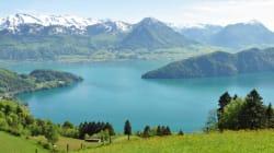 Un lac suisse trop propre (pour les