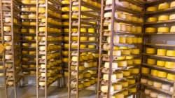 États-Unis: les pro-fromage se mobilisent pour protéger le