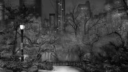 Il fascino notturno di Central Park