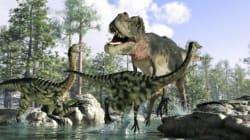 Les dinosaures se battaient pour leur survie bien avant la chute de