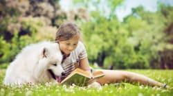 Pierre et le loup - Pourquoi cette histoire n'empêche pas les enfants de