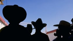 Calgary Stampede: A Breeding Ground For
