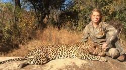 Lei caccia animali protetti, Facebook