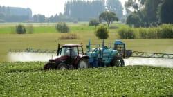 L'épandage des pesticides près des écoles davantage