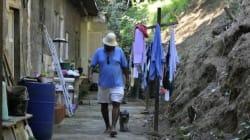 O movimento quilombola pode ser o maior programa do mundo de reparação pela