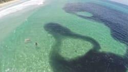Ceci n'est pas une marée