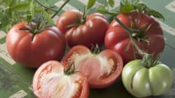 ¿Productos orgánicos o convencionales? La ciencia