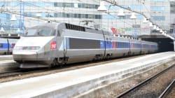 La réforme ferroviaire, à l'origine d'une longue grève, définitivement