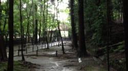 多くのお坊さんが絶賛する京都のお寺「法然院」の住職が考える、お寺の役割とは